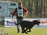 Galerie 058 Forte Schutz (www.dog-pics.at).jpg anzeigen.